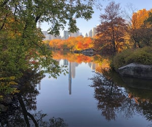 autumn, beautiful places, and Central Park image