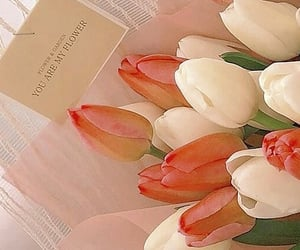 flowers, headers, and pink image