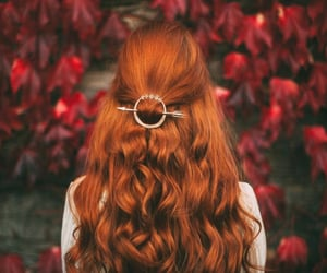 autumn, hair, and long image