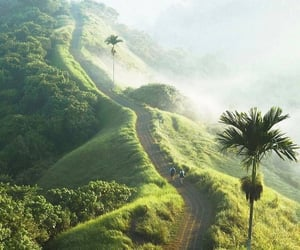 aesthetics, beautiful, and nature image