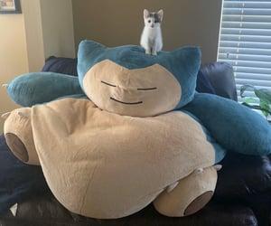 kitten, pokemon, and cat image