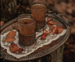 autumn, outdoors, and spiced image