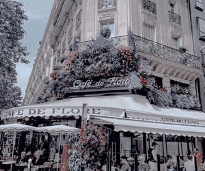 aesthetic, flowers, and paris image