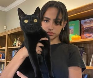 girl, cat, and pfp image