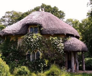 house, cottage, and nature image