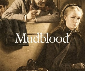 harry potter, witch, and mudblood image