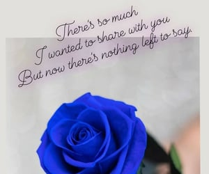 qoute, rose, and love image