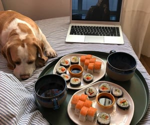 food, foods, and japanese food image