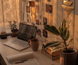 home, plants, and work image