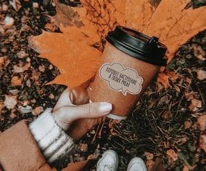 autumn, coffee, and like image