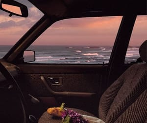 beach, car, and flowers image