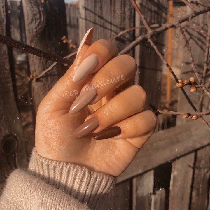 autumn, beauty, and nails image