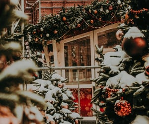 background, christmas, and christmas tree image