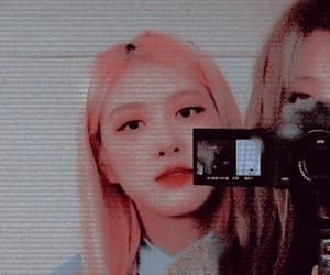 gif, rose, and rose themes image