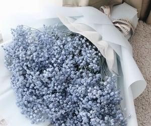 Blue Baby's Breath ___ wholesale florist near me | Bulk Flowers | Pinterest