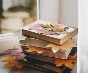 books, fall, and read image