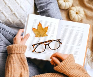 fall, good books, and good reads image