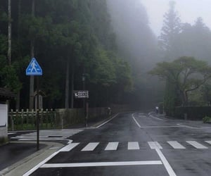 street, fog, and green image