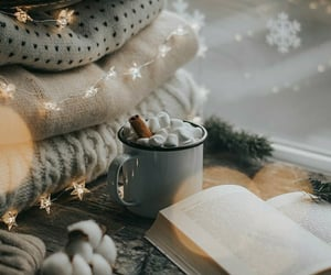 book, sweater, and christmas image