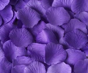 aesthetic, deep purple, and edit image