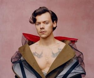 harry styles gif and Harry Styles image
