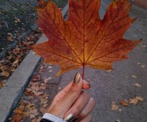 Walk in the autumn breeze