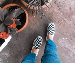 naturaleza, vans, and macetas image