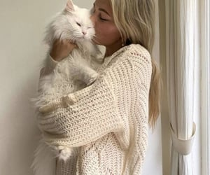 cat, girl, and animals image