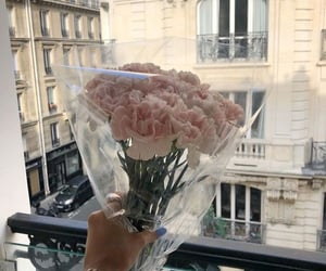flowers, pink, and paris image
