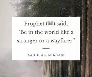 islam, islamic, and stranger image