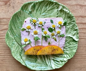 cream cheese, daisy, and flowers image