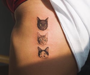 tattoo, cat, and fashion image