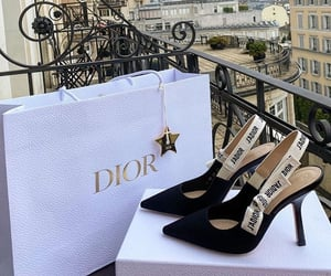 brands, chic, and Christian Dior image