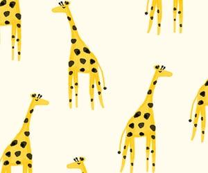 amarillo, background, and pattern image