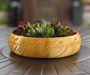 etsy, succulent, and the hobbit image