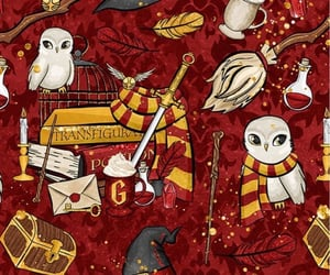 gryffindor, harrypotter, and hedwig image