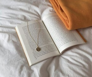 book, aesthetic, and orange image