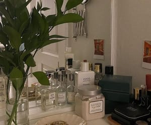 aesthetic and fragrance image