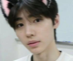 sunghoon catboy