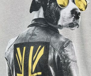 animal, dog, and illustrations image