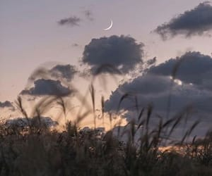 sky, aesthetic, and moon image