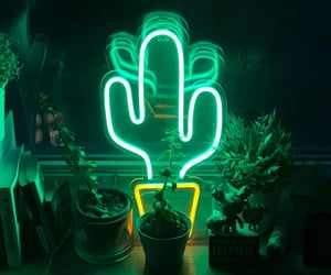neon, green, and plants image