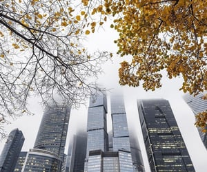 autumn, moscow, and rusia image