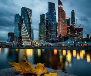 autumn, city, and lights image