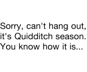 quidditch, harry potter, and funny image