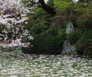 japan and nature image