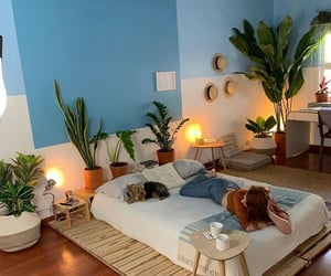 bedroom, cactus, and decor image