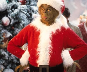 grinch, christmas, and winter image