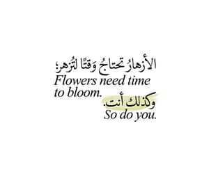 arabic, beautiful, and book image