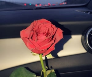 car, evening, and red rose image